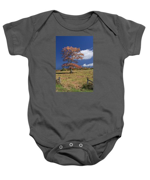 Fall Tree Baby Onesie