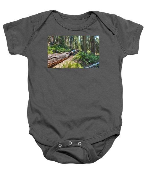 Fallen Tree- Baby Onesie