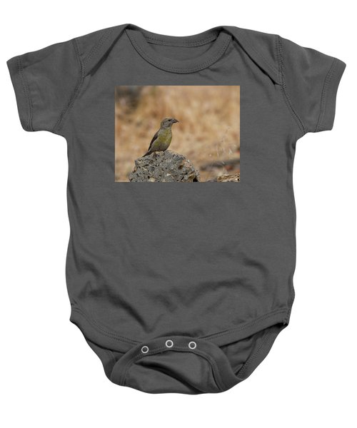Female Red Crossbill Baby Onesie by Doug Lloyd