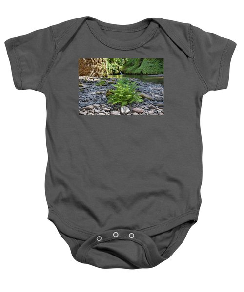 Ferns Along Banks Of Eagle Creek Baby Onesie