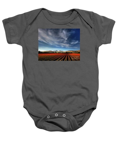 Field Of Color Baby Onesie