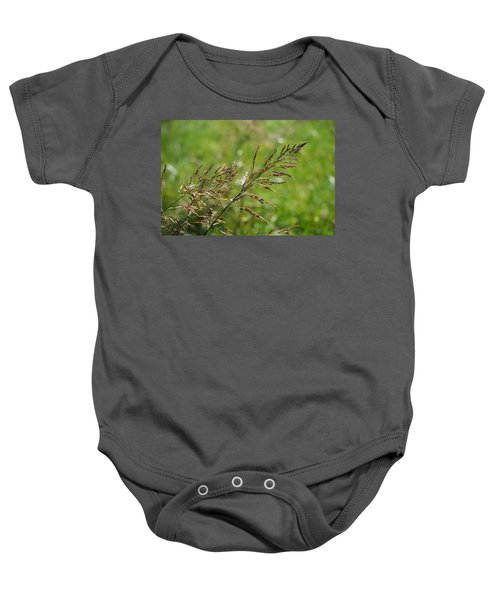 Fields Of Grain Baby Onesie