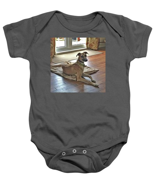 Finly - Ava The Saluki's New Companion Baby Onesie