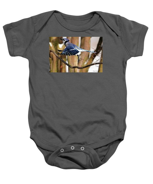 Flight Of The Blue Jay Baby Onesie