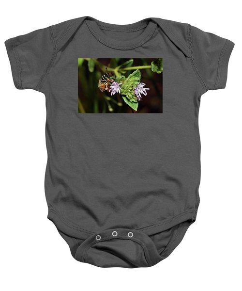 Flower Scarab - Trigonopeltastes Delta Baby Onesie