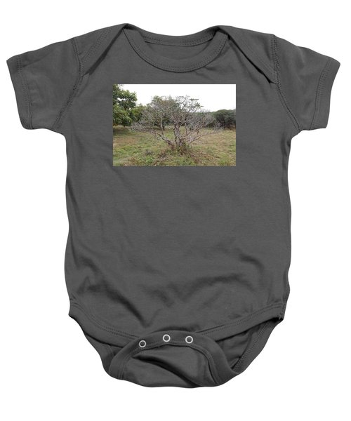 Forest Character Tree Baby Onesie