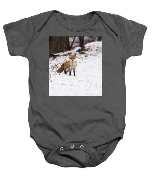 Fox 4 Baby Onesie