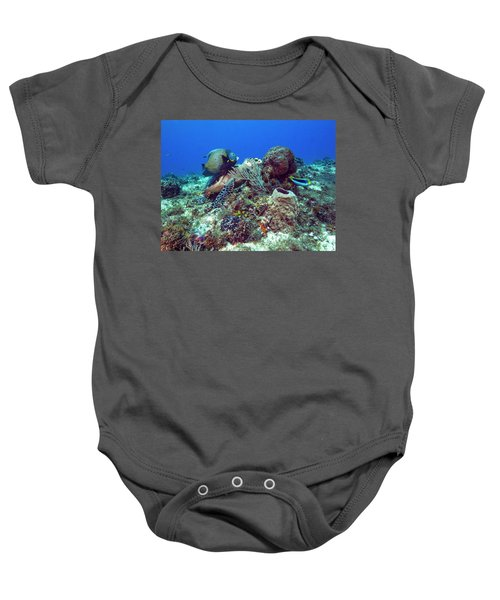 French Angelfish And The Green Turtle Baby Onesie
