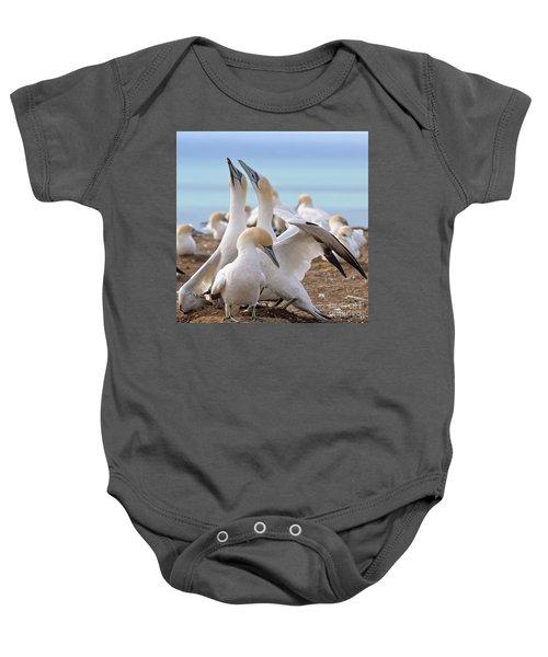 Gannets Baby Onesie