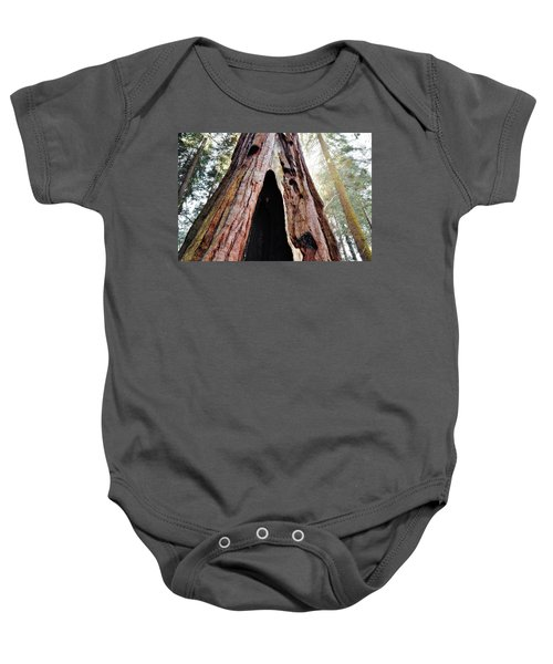 Giant Forest Giant Sequoia Baby Onesie