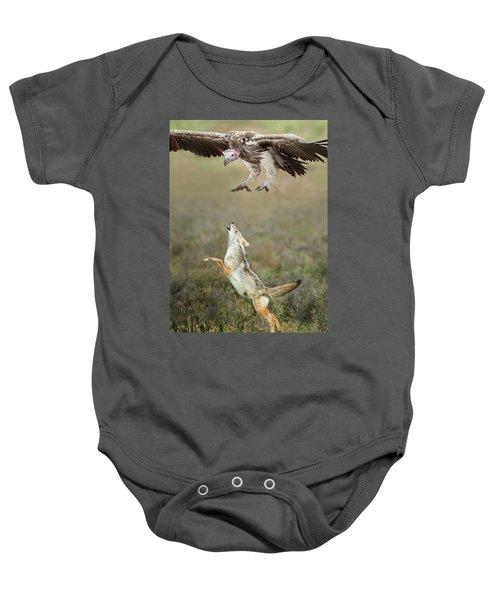 Golden Jackal, Canis Aureus, Leaping At Vulture Baby Onesie