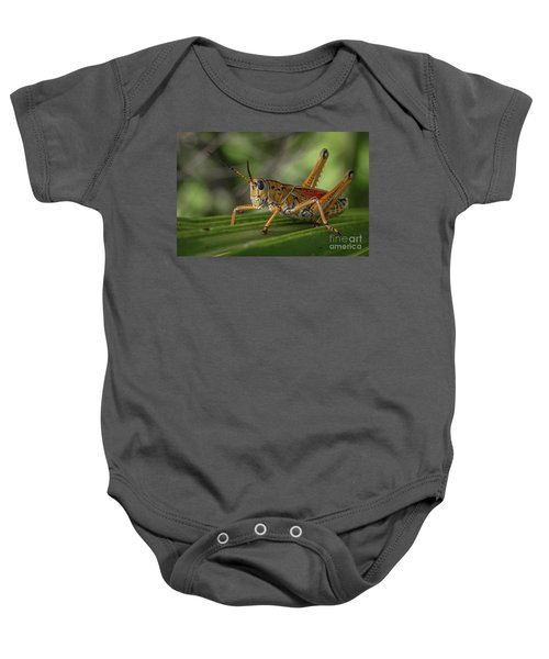 Grasshopper And Palm Frond Baby Onesie