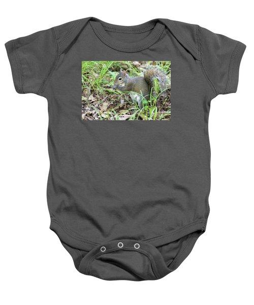 Gray Squirrel Eating Baby Onesie