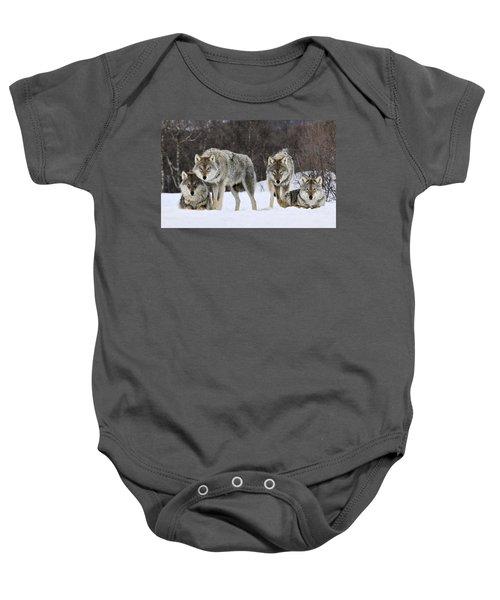 Gray Wolves Norway Baby Onesie