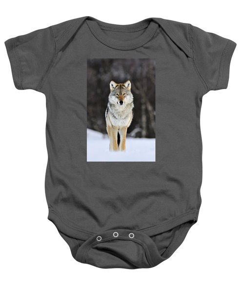 Gray Wolf In The Snow Baby Onesie