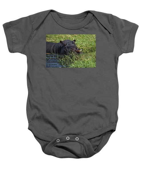 The Hippo And The Jacana Bird Baby Onesie