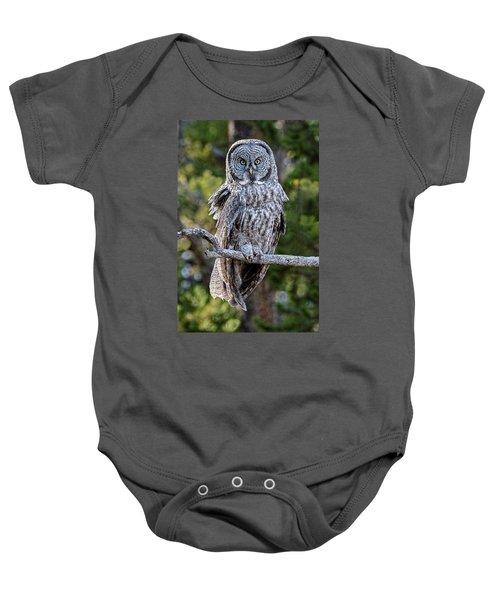 Great Grey Owl Yellowstone Baby Onesie