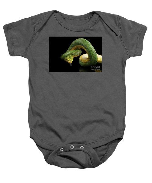 Green Tree Python. Morelia Viridis. Isolated Black Background Baby Onesie