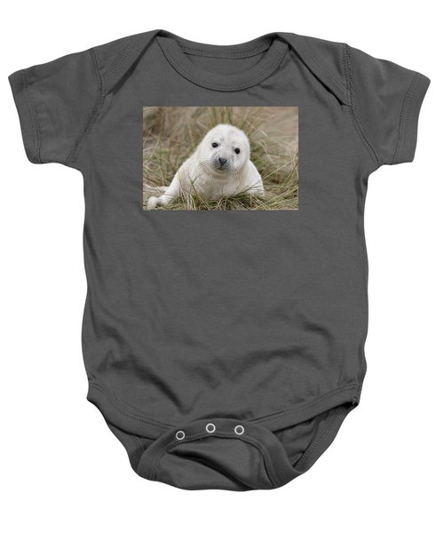 Grey Seal Pup Baby Onesie