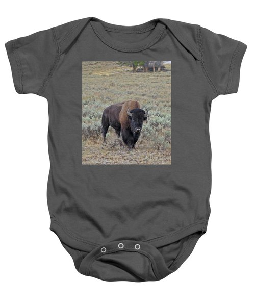 Handsome Bison Bull Baby Onesie