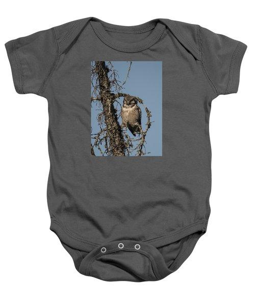 Hawk Owl Gaze Baby Onesie