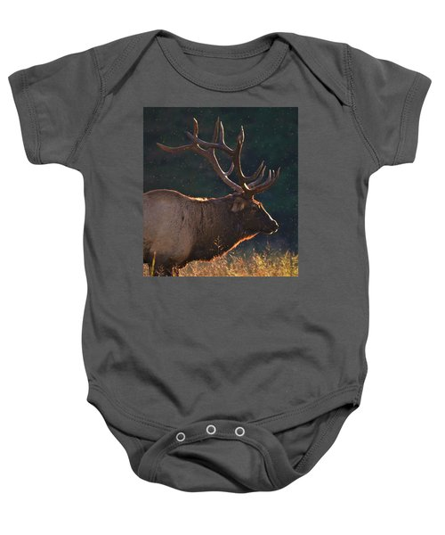 Head Of The Herd Baby Onesie