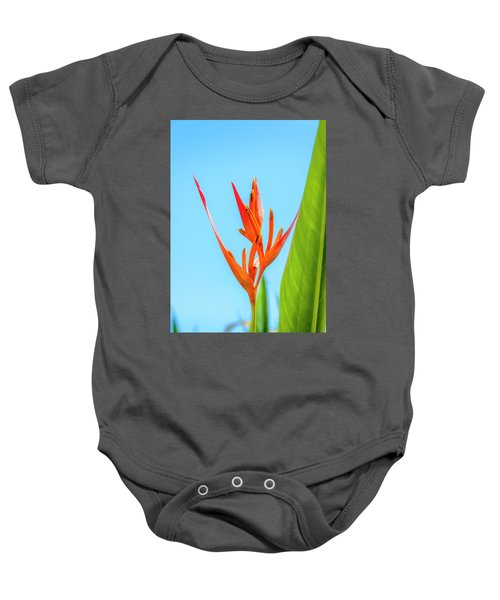 Heliconia Flower Baby Onesie