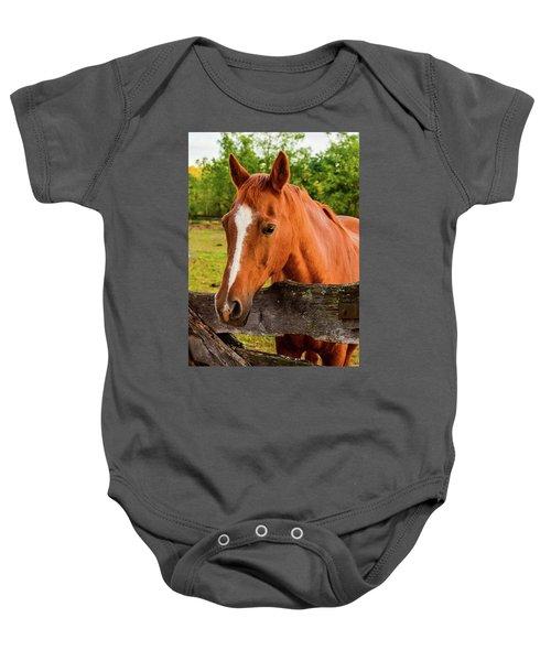 Horse Friends Baby Onesie