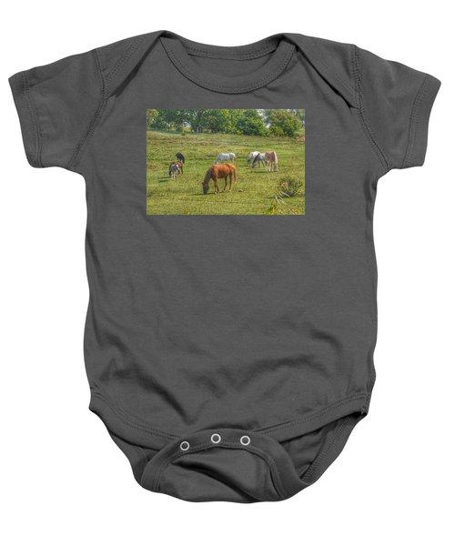 1003 - Horses In A Pasture I Baby Onesie
