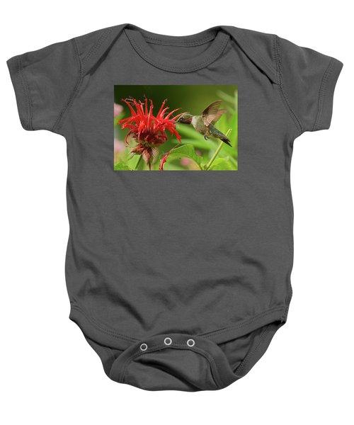 Hummingbird Delight Baby Onesie