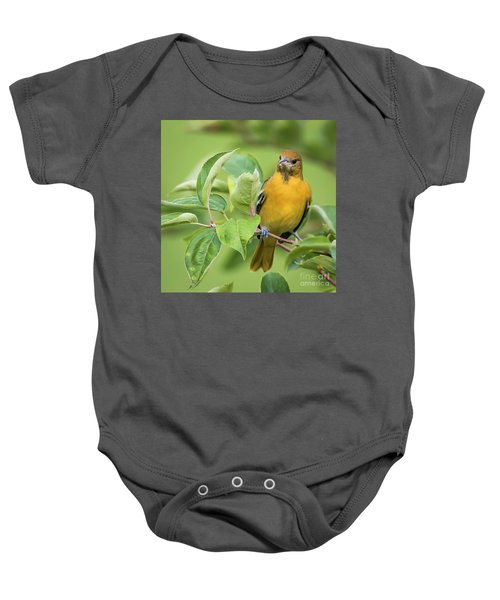 Immature Baltimore Oriole  Baby Onesie by Ricky L Jones