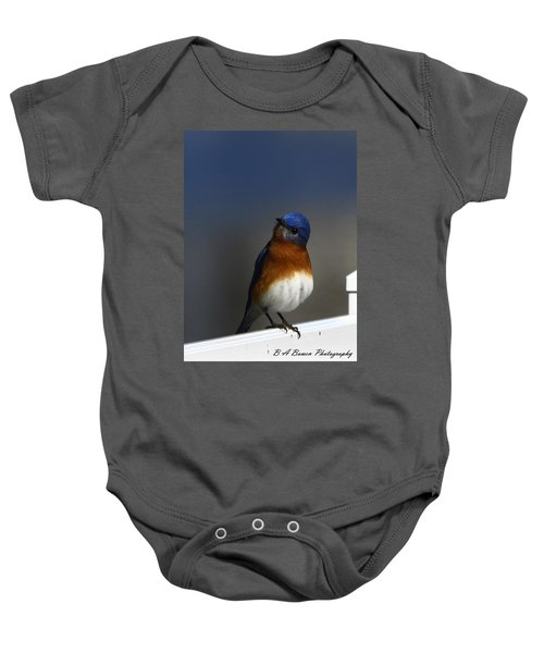 Inquisitive Bluebird Baby Onesie