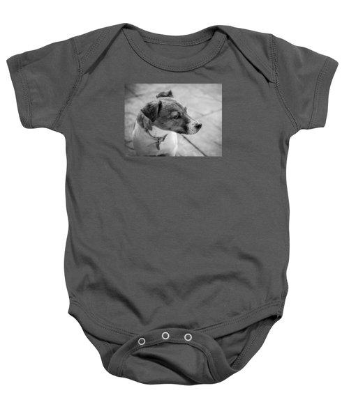 Jack Russell Baby Onesie