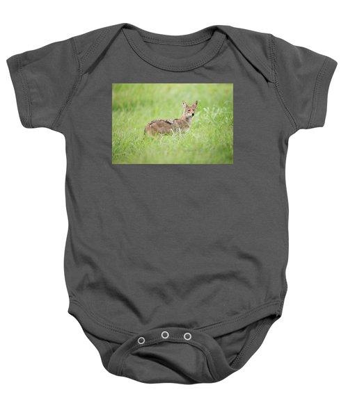 Juvenile Coyote Baby Onesie