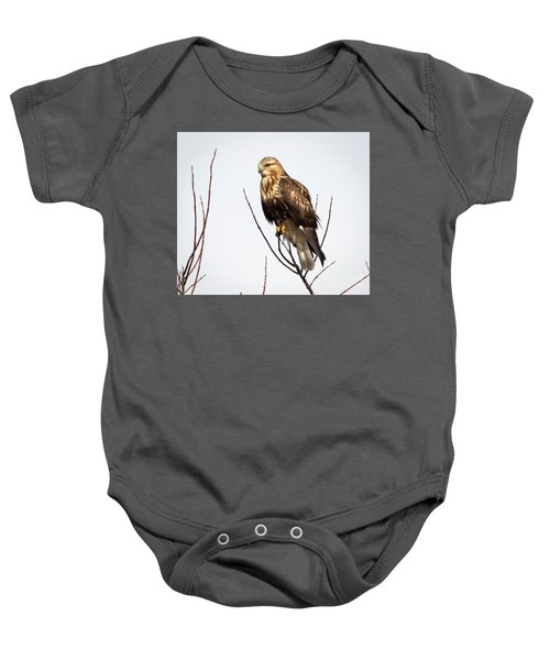 Juvenile Rough-legged Hawk  Baby Onesie
