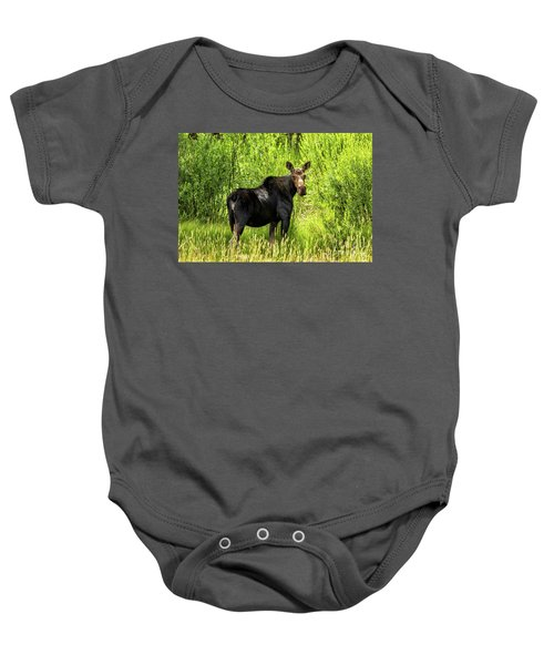 Keep Your Distance Wildlife Art By Kaylyn Franks Baby Onesie