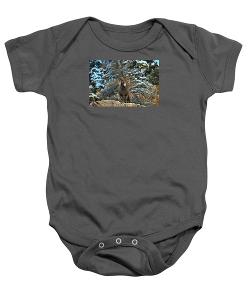 King Of The Canadian Rockies Baby Onesie