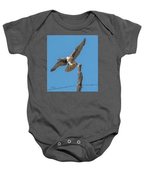 Landing Prairie Falcon Baby Onesie