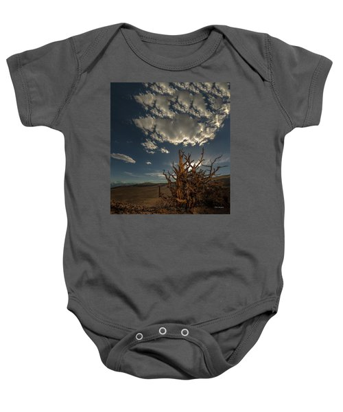 Late Afternoon In The Bristlecone Forest Baby Onesie