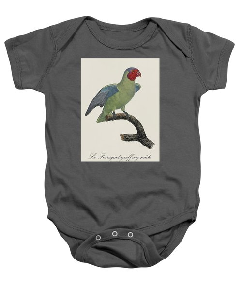 Le Perroquet Geoffroy Male / Red Cheeked Parrot - Restored 19th C. By Barraband Baby Onesie