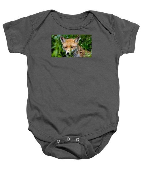 Little Baby Fox Baby Onesie
