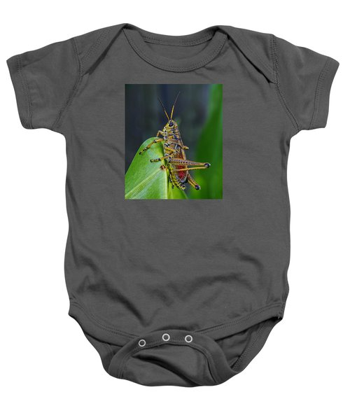 Lubber Grasshopper Baby Onesie by Richard Rizzo