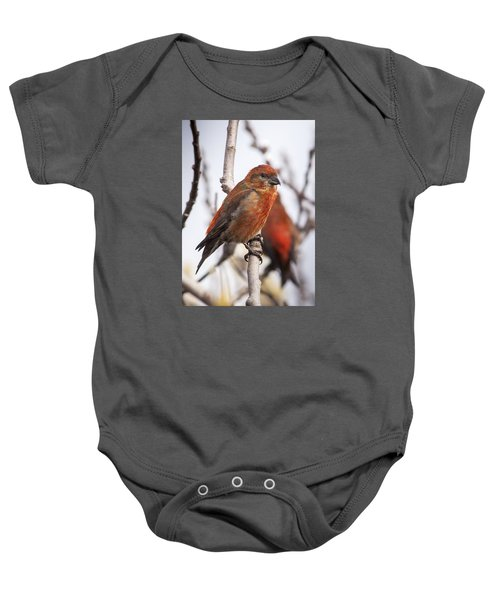 Male Red Crossbills Baby Onesie by Robert Potts