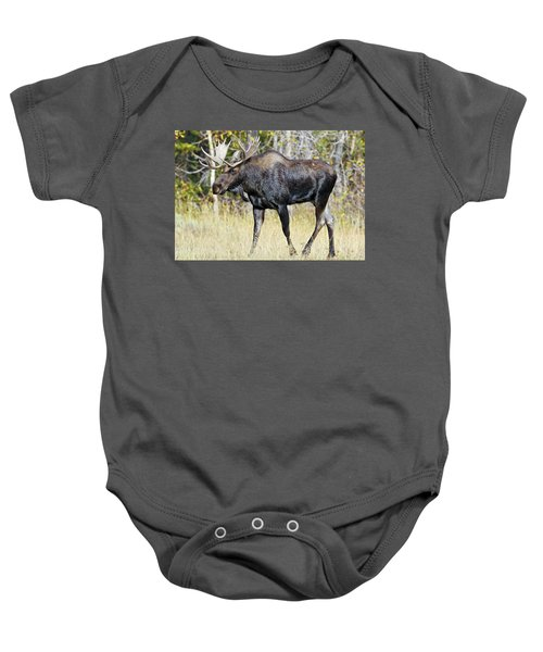 Moose On The Move Baby Onesie