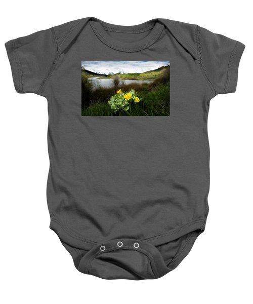 Mount Moran Spring Baby Onesie