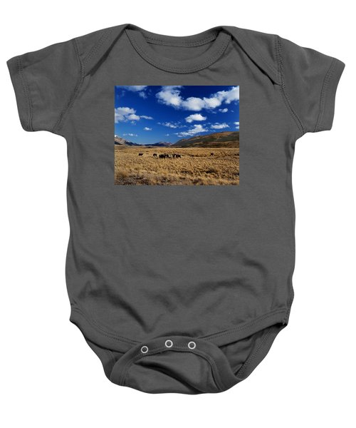 Mount Nicholas Station New Zealand Baby Onesie