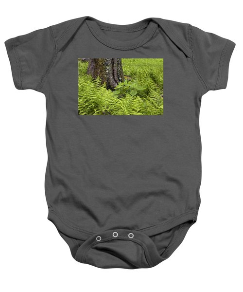 Mountain Green Ferns Baby Onesie