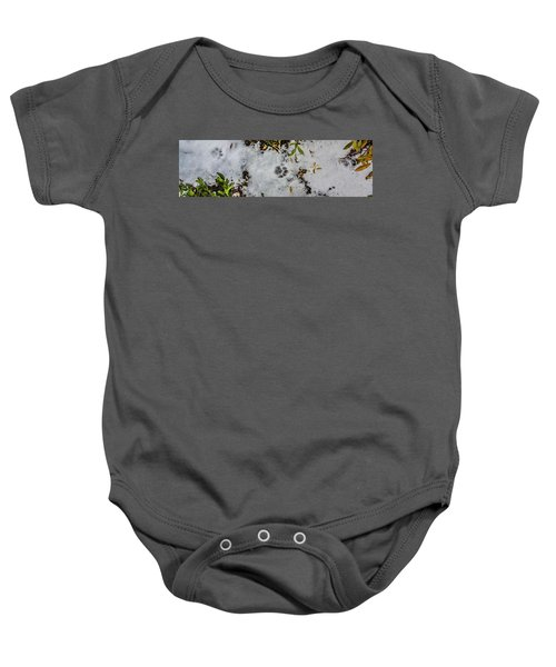 Mountain Lion Tracks In Snow Baby Onesie