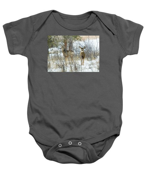 Mule Deer Does In Snow Baby Onesie