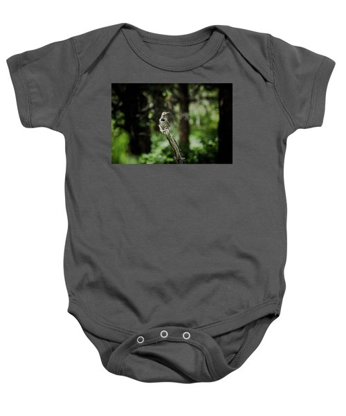 Northern Flicker Baby Onesie